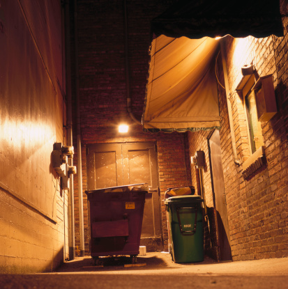 Industrial Garbage Bin「Dumpster in Alley」:スマホ壁紙(8)
