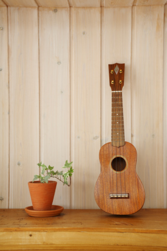 Guitar「Ukulele and Plant Pot on Shelf, Front View」:スマホ壁紙(2)
