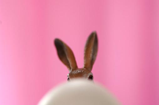 イースター「Toy Easter bunny hiding behind egg」:スマホ壁紙(0)