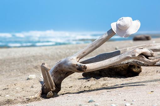 帽子「Hat on a piece of Driftwood, Playa Hermosa, Costa Rica」:スマホ壁紙(15)