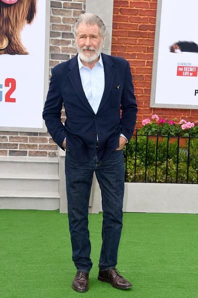 Frazer Harrison「Premiere Of Universal Pictures' 'The Secret Life Of Pets 2' - Arrivals」:写真・画像(18)[壁紙.com]