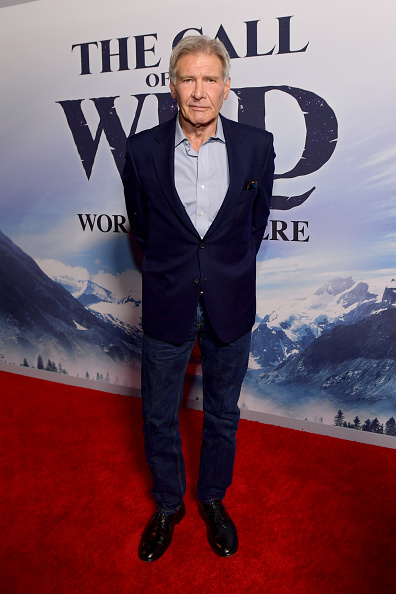 """The Call of the Wild - 2020 Film「Premiere Of 20th Century Studios' """"The Call Of The Wild"""" - Red Carpet」:写真・画像(3)[壁紙.com]"""