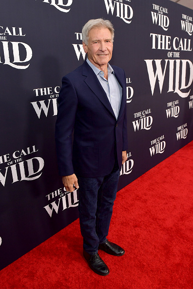 """The Call of the Wild - 2020 Film「Premiere Of 20th Century Studios' """"The Call Of The Wild"""" - Red Carpet」:写真・画像(11)[壁紙.com]"""