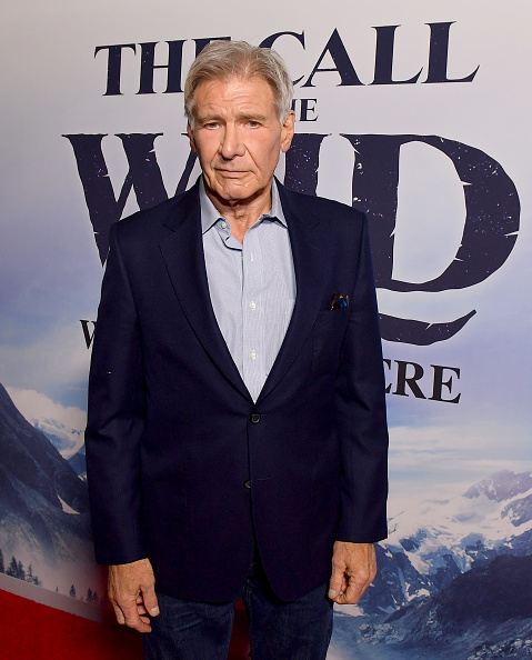 """The Call of the Wild - 2020 Film「Premiere Of 20th Century Studios' """"The Call Of The Wild"""" - Red Carpet」:写真・画像(8)[壁紙.com]"""