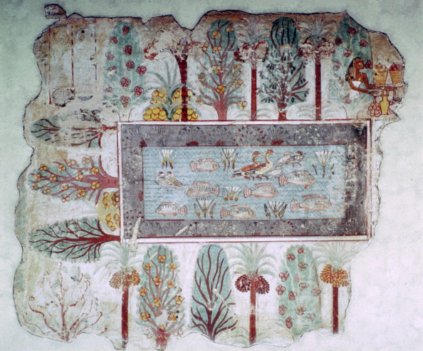 Ornamental Garden「Egyptian wall-painting of an ornamental pool with fish, 14th century BC.」:写真・画像(3)[壁紙.com]