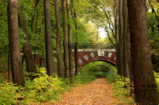 Grove「Brick bridge」:スマホ壁紙(3)