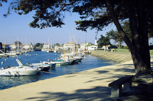 Nouvelle-Aquitaine「Boats in marina in Ars, France」:スマホ壁紙(0)
