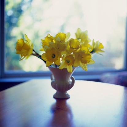 flower「Daffodils in a Vase」:スマホ壁紙(19)