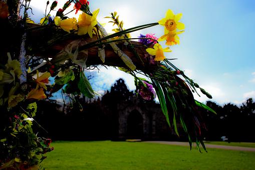Isle of Man「Daffodils in Spring」:スマホ壁紙(5)