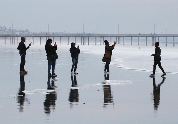 Photographing「Scenics at Venice Beach」:写真・画像(19)[壁紙.com]