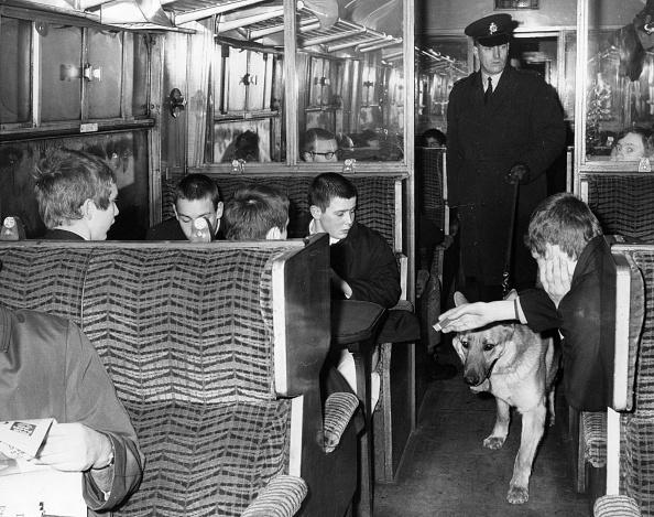 Railroad Car「Dog Patrol」:写真・画像(14)[壁紙.com]
