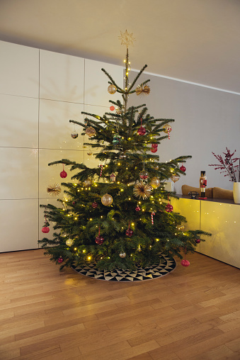 Event「Decorated Christmas tree in living room」:スマホ壁紙(10)