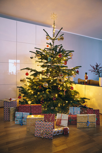 Gift「Decorated Christmas tree in living room with Christmas presents in the foreground」:スマホ壁紙(15)