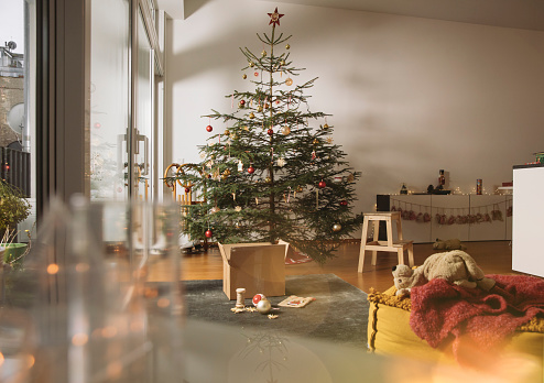 Christmas Decoration「Decorated Christmas tree in family living room」:スマホ壁紙(19)