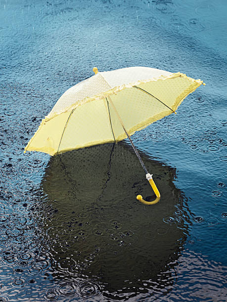Umbrella floating on water, high angle view:スマホ壁紙(壁紙.com)