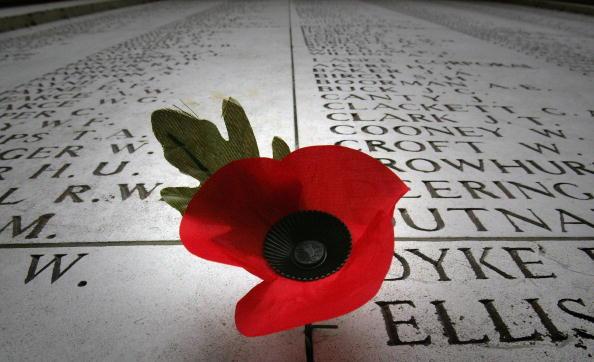 Poppy - Plant「First World War Battlefields Prepare For Armistice 90th Anniversary」:写真・画像(11)[壁紙.com]