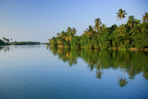India「Tropical Landscape along Kerala Backwaters」:スマホ壁紙(10)
