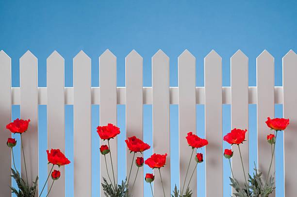 White Picket Fence With Flowers:スマホ壁紙(壁紙.com)