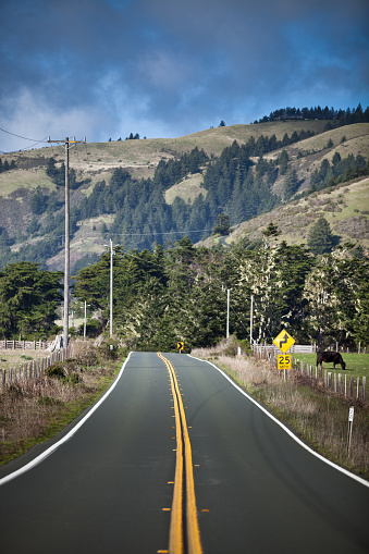 California State Route 1「Pacific Coast Highway through Mendocino County, CA」:スマホ壁紙(13)