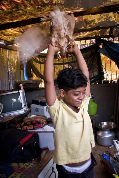 Hen「Slumdog Millionairre Child Stars Face Mumbai Slum Eviction」:写真・画像(16)[壁紙.com]