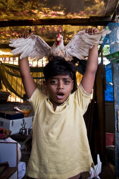 Hen「Slumdog Millionairre Child Stars Face Mumbai Slum Eviction」:写真・画像(17)[壁紙.com]