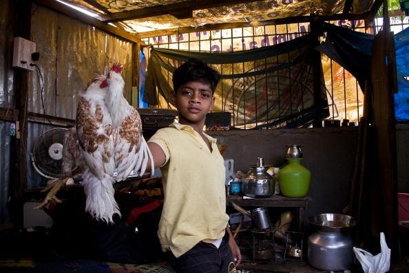 Hen「Slumdog Millionairre Child Stars Face Mumbai Slum Eviction」:写真・画像(19)[壁紙.com]