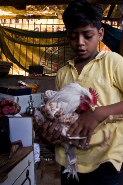 Hen「Slumdog Millionairre Child Stars Face Mumbai Slum Eviction」:写真・画像(15)[壁紙.com]