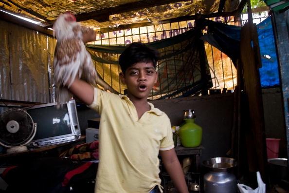 Hen「Slumdog Millionairre Child Stars Face Mumbai Slum Eviction」:写真・画像(18)[壁紙.com]