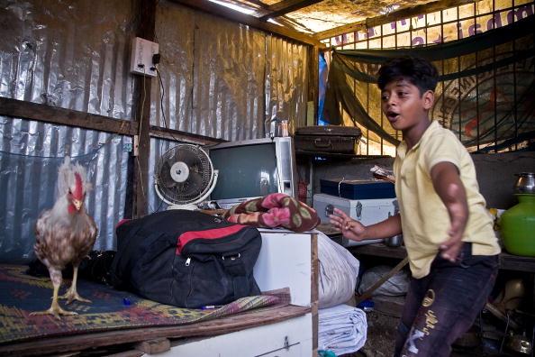 Hen「Slumdog Millionairre Child Stars Face Mumbai Slum Eviction」:写真・画像(14)[壁紙.com]