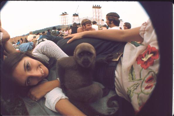 Crowd「The Woodstock Monkey With Friends」:写真・画像(5)[壁紙.com]