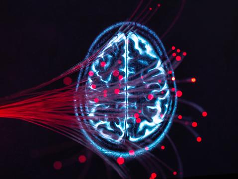 Neuroscience「Neuroscience, Fibre optics carrying data around the brain」:スマホ壁紙(8)