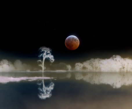 Multiple Exposure「Moon from total lunar eclipse composited with trees reflected in water with colors inverted for 'negaive' effect, Laguna de Santa Rosa, California, USA」:スマホ壁紙(9)
