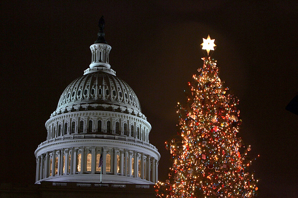 Tree「Congress Hosts Capitol Tree Lighting Ceremony」:写真・画像(18)[壁紙.com]