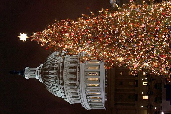 Speaker of the House「Congress Hosts Capitol Tree Lighting Ceremony」:写真・画像(13)[壁紙.com]