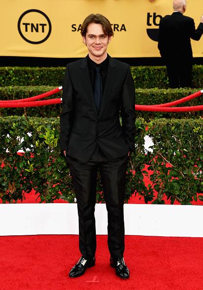 Textured「21st Annual Screen Actors Guild Awards - Arrivals」:写真・画像(17)[壁紙.com]
