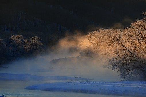 朝顔「Japan's scenery (sound plume bridge)」:スマホ壁紙(1)
