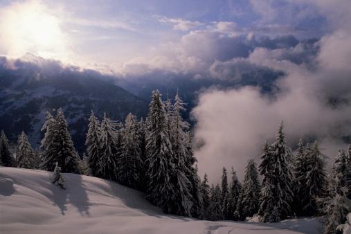 冠雪「Winter scene in the Swiss Alps.」:スマホ壁紙(3)