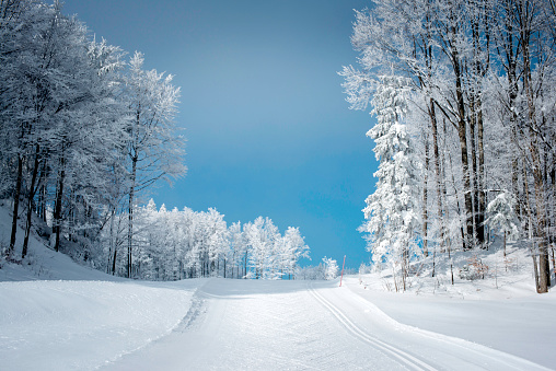 Frost「Winter Scene with Cross-Country Skiing Track in Julian Alps」:スマホ壁紙(13)