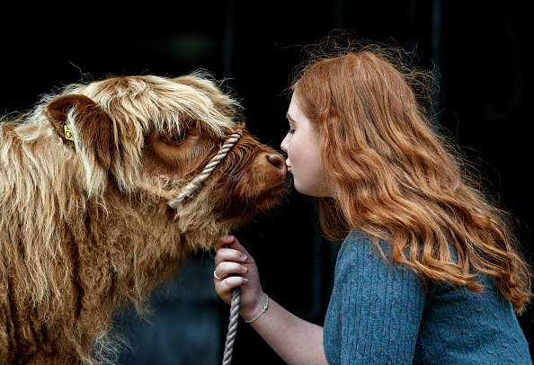 Finance and Economy「Preview Day At The Royal Highland Show」:写真・画像(10)[壁紙.com]