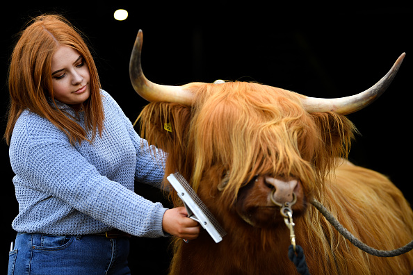 Farm「Preparations Are Made Ahead Of The Royal Highland Show」:写真・画像(0)[壁紙.com]