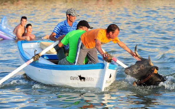 Costa Blanca「Revellers Chase Bulls Into The Sea During The Bous A La Mar Festival」:写真・画像(15)[壁紙.com]