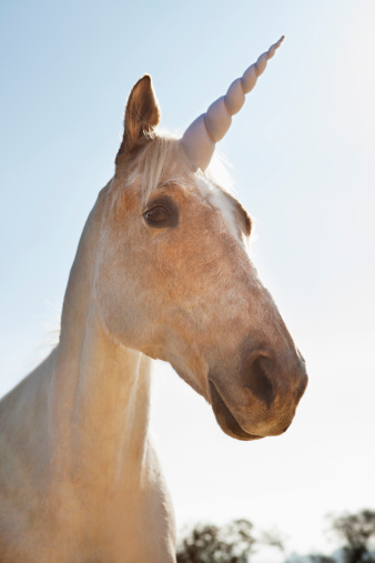 Digital Composite「Unicorn outdoors」:スマホ壁紙(13)