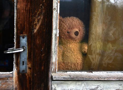 Curiosity「Teddy bear in a window」:スマホ壁紙(18)