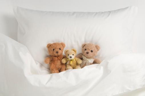 Stuffed Animals「Teddy bear on bed」:スマホ壁紙(12)