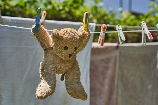 Stuffed Animals「Teddy bear hanging on a clothesline」:スマホ壁紙(7)