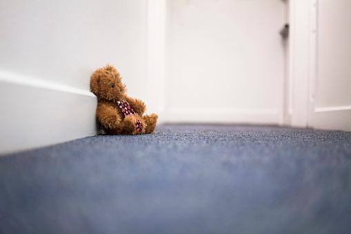Stuffed Animals「Teddy Bear on Carpet in Hallway」:スマホ壁紙(4)