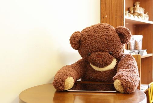 ぬいぐるみ「Teddy bear using digital tablet in cafe」:スマホ壁紙(9)