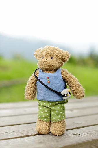 ぬいぐるみ「Teddy bear wearing clothes standing on bench」:スマホ壁紙(12)