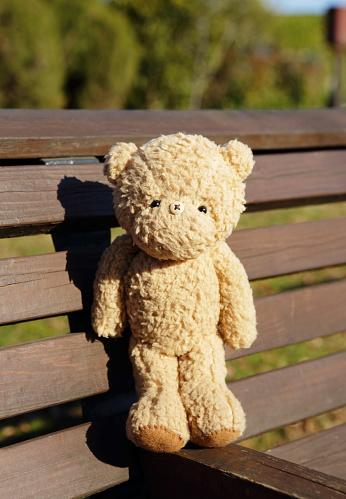 ぬいぐるみ「Teddy bear on the bench」:スマホ壁紙(14)