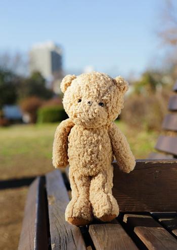 ぬいぐるみ「Teddy bear on the park bench」:スマホ壁紙(10)